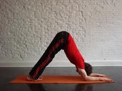 yoga-posturas-para-adelgazar-delfin
