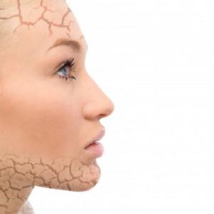 alimentos con colageno para cuidar la piel